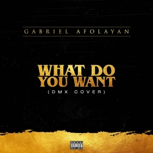 Gabriel Afolayan - What Do You Want